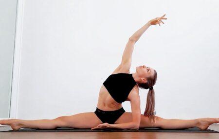 Flexibility (cursus)